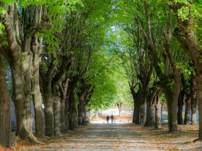 abbaye Royale du moncel mariage suite (5)
